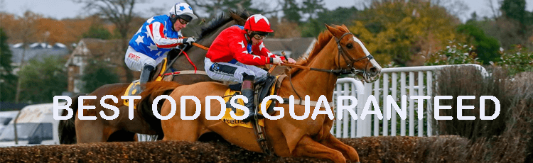 What does Best Odds Guaranteed mean?