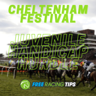 Juvenile Handicap Hurdle Tips