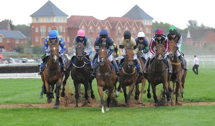 Stratford horse racing betting guide good websites for sports betting